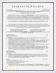 Professional Resume Writers Nyc - The 10 Best Resume Writing ...