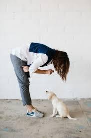 Do Redbone Coonhounds Shed by 25 Best Redbone Coonhound Images On Pinterest Redbone Coonhound
