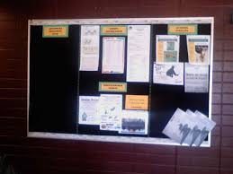 Professional Display Board Counseling Blog Bulletin S Science Project Poster Toretoco