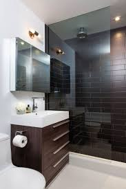 Best Plant For Dark Bathroom by Best 10 Black Tile Bathrooms Ideas On Pinterest White Tile