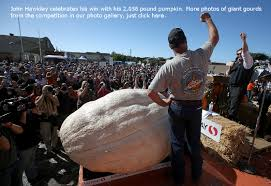 Carmichael Pumpkin Patch Tulsa Ok by Pumpkin Patches And Hayrides Before Halloween 2014 In Tulsa And