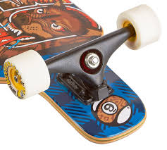 100 Sector 9 Trucks Sector Mini Shaka Trucks Review Longboards