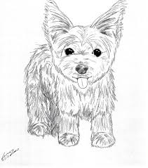 To Print Yorkie Coloring Pages 22 On Site With