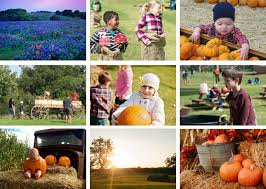 Pumpkin Patch Bastrop County by Giveaway Win A Family Pack Of Tickets To Barton Hill Farms