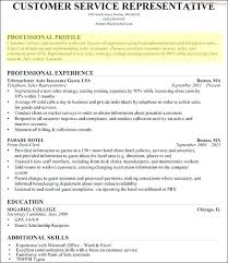 Examples Of Resume Profile Template Sample Statement On Example Professional Cv