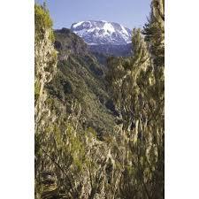 Trekking Kilimanjaro Guidebook
