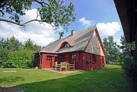 roter schwede ferienhaus unter reet hund an der ostsee