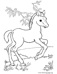 Horse Coloring Pages Awesome Mare And Foal Hellokids For Adults Home
