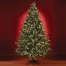 75 Ft Slim Christmas Tree by The Five Minute Christmas Tree 7 5 U0027 Full Hammacher Schlemmer