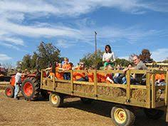 Pumpkin Patch Hayrides Lancaster Pa by Family Fun And Pumpkin Patch At Weber U0027s Cider Mill Farm In