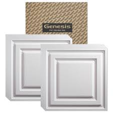Usg Ceiling Tiles 2x2 by Amazon Com Genesis Icon Relief White Ceiling Tile Carton Of 12
