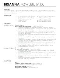 Best Resume Format For Freshers Computer Engineers Free Download An Example Of A Good Summary Examples