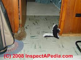 Dog Urine Odor Hardwood Floors by Odor Source Track Down How To Find The Source Of Pet U0026 Other