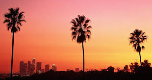 Back To California Palm Trees On My Mind