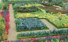 Start Planning Your Garden