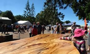 100 Tree Houses Maleny Wood Expo 2019