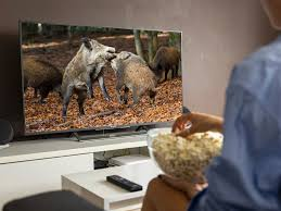 und hund tv tipps für jäger und hund