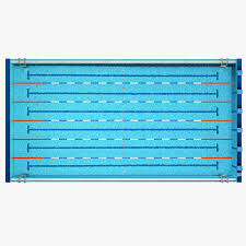 Swimming Pool 3d Model Olympic Size Dimensions