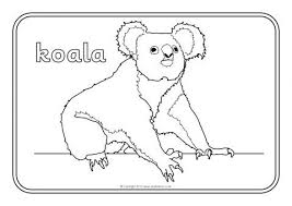 View Preview Australian Animals Colouring Sheets SB9002