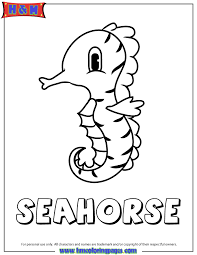 Baby Seahorse Coloring Page