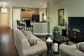 chfs with stylish decorating ideas living room light green walls