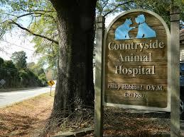 countryside animal hospital countryside animal hospital home