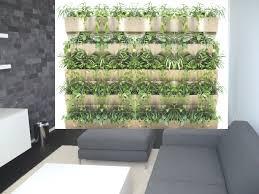 grüne wände mit hydrokulturen pflegeleichte büro und
