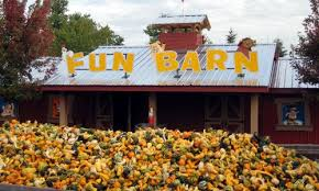 Bengtson Pumpkin Farm Chicago by Bengston U0027s Pumpkin Farm Outdoor Activities Pinterest Pumpkin