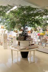 Christmas Tree Shop Syracuse Ny by 5617 Best Shops Boutiques U0026 Display Images On Pinterest Windows