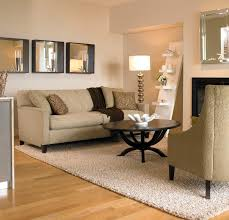 best of area rug living room 14 photos home improvement