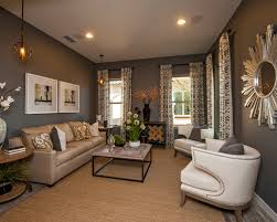 Brown And Gray Living Room Grey Ideas Pictures Remodel Decor Awesome 7