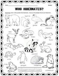 Color In The Animals Who Hibernate And Cross Out With Pencil That Do Not