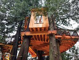 100 Tree House Studio Wood Mix Regional News Pacific Northwest Bear Creek Builds