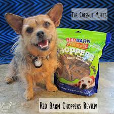 The Chesnut Mutts: July 2015 Rowleys Red Barn Utahs Own Ikea Baby Dresser Used Cribs For Home Decor Cheap Crib Mattress Reviews For Veterinary Hospital Dahlonega Georgia Olympia Stadium Wool Banner Detroit Athletic Peanut Butter Filled Bone By Redbarn Small Size 26 Best Dog Food Images On Pinterest Food Exterior Design Wood Siding And Behr Deck Over Antique Art Emporium In Louisville Ky 40243 Storage Metal Sheds Lowes Arrow Shed Mall 52 Photos 12 Store The British Pub And Ding Surrey