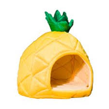 YML Pineapple Dog Dome at Wayfair Indy NEEDS this