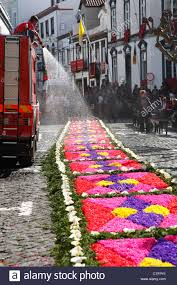 Fire Truck Spraying Water On Flower Carpet During Religious Festival At Ponta Delgada Azores Islands