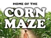 Pumpkin Patch And Corn Maze Milton Fl by The Weekend U0027s Hottest Attractions Floridahauntedhouses Com