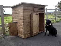 Over 100 Free Dog House Plans | DIY Stuff | Pinterest | Dog House ... Cloud Nine Dog Traing Best Houses In 2017 For Both Indoor And Outdoor Use Siberian Husky Costs Facts Infographic Ultimate Guide Farmer Tag Wallpapers Country Children Tractor Fields Farm Dogs Plastic Dog Barnhome Kennel Petshop Online 25 Food Bowls Ideas On Pinterest Project Food Cindee X Stackhouse Owyheestar Weimaraners News 614 Best Australian Cattle Images Blue Heelers 5 Facts About Dogs Deworming The Horse Owners Resource Lonely Escapes Yard To Get A Hug From His Friend Youtube Oakwood Park Morton6711
