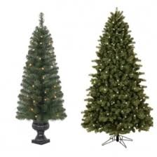 Christmas Tree Types Canada by Clearance Christmas Trees From 49 49 Lowe U0027s Canada