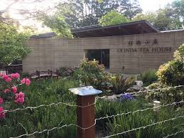 100 Backyard Tea House Olinda Olinda Victoria Restaurant HappyCow