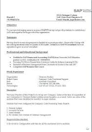 Sap Mm Sample Resume For 2 Years Experience 4 Resumes