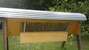 Brisbane Backyard Bees Midstate Bkeepers Photo Gallery Top Bar Hive Plans Free Ittk A Detailed Look At The Beehive Perfectbee The Great Alaskan My Creations Brisbane Backyard Bees With Entry Feeder In Alaska Youtube Best Wild Bunch Alternative Bkeeping Hives Sustainable For Langpohl Its Bees Knees Peace Bee Farmer Managing 200 Lowcost Way Book Demstration