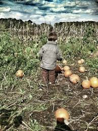 Pumpkin Picking Nj by 49 Best My Home Town Images On Pinterest Farms Awesome Quotes