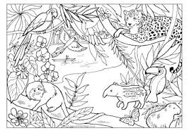 Rainforest Colouring Page Pertaining To Jungle Scene Coloring Pages