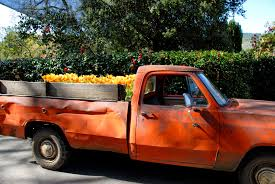 File:Filoli Garden Truck.jpg - Wikimedia Commons Small Truck Abandoned Garden California Stock Photo Edit Now Festival Plant Truck Feroni 156083986 Beer Coffee Food Trucks More Fill Qutyard Eater San You Have To See These Stunning Japanese Mini Gardens Contest Christmas Farm Flag 12 X 18 Wheelbarrow Sack Trolley Cart 75l Capacity Tipper An Old In The Garden Stock Image Image Of Green 37246657 Tonka Workshop Decorative Planter Natural Cedar Wood Olive Green Red Carolina Pine Country Store Wind Weather Solar Pickup Art Reviews Wayfair Wichitas Newest Food Eatin Hits Streets On