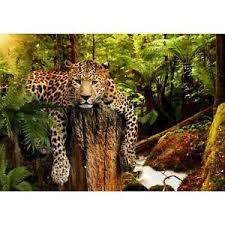 details zu fototapete leopard afrika vliestapete grün braun wohnzimmer schlafzimmer modern