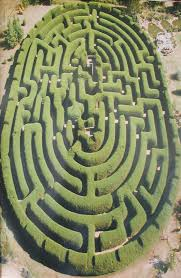 Petaluma Pumpkin Patch Corn Maze Map by Corn Maze Design History Fritzler Colorado Corn Maze A Mazing