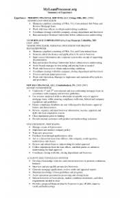 Resume Useful Objective Examples Loan Processor In Ideas Of Insurance Underwriting