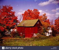 In Peacham In Vermont In The USA Autumn Provides Brilliant Red ... Pin By Cory Sawyer On Make It Home Pinterest Abandoned Cars In Barns Us 2016 Old Vintage Rusty A Gathering Place Indiego Red Barn The Countryside Near Keene New Hampshire Usa Stock The Barn Journal Official Blog Of National Alliance Classic Sesame Street In Bq Youtube Weathered Tobacco Countryside Kentucky Photo Fashion Rain Boots Sloggers Waterproof Comfortable And Fun Red Wallowa Valley Northeast Oregon Wheat Fields Palouse Washington