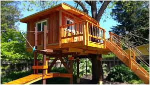 Backyards : Compact Modern Big Tree House 94 Backyard Wonderful ... 10 Fun Playgrounds And Treehouses For Your Backyard Munamommy Best 25 Treehouse Kids Ideas On Pinterest Plans Simple Tree House How To Build A Magician Builds Epic In Youtube Two Story Fort Stauffer Woodworking For Kids Ideas Tree House Diy With Zip Line Hammock Habitat Photo 9 Of In Surreal Houses That Will Make Lovely Design Awesome 3d Model Free Deluxe